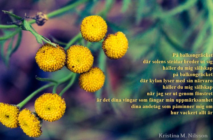 Balkongräcket_KristinaMNilsson
